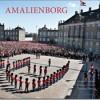 Jørgen Larsen, Thomas Larsen og Bjarke Ørsted: Amalienborg