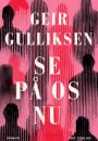 Geir Gulliksen: Se på os nu