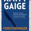 Amity Gaige: Forsvindinger