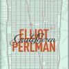 Elliot Perlman: Gadefejeren