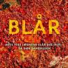 Hugh Howey: Blår