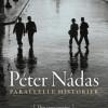 Péter Nádas: Parallelle historier, Den tavse provins
