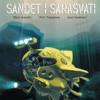 Petri Tolppanen: Sandet i Sarasvati