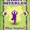 Mikael Bergstrand: Yogi i Østerlen