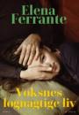 Elena Ferrante: Voksnes løgnagtige liv